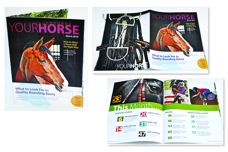 graphic-horsemag2
