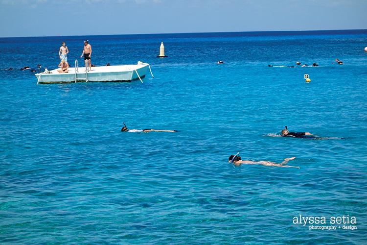 Cruise, Cozumel10