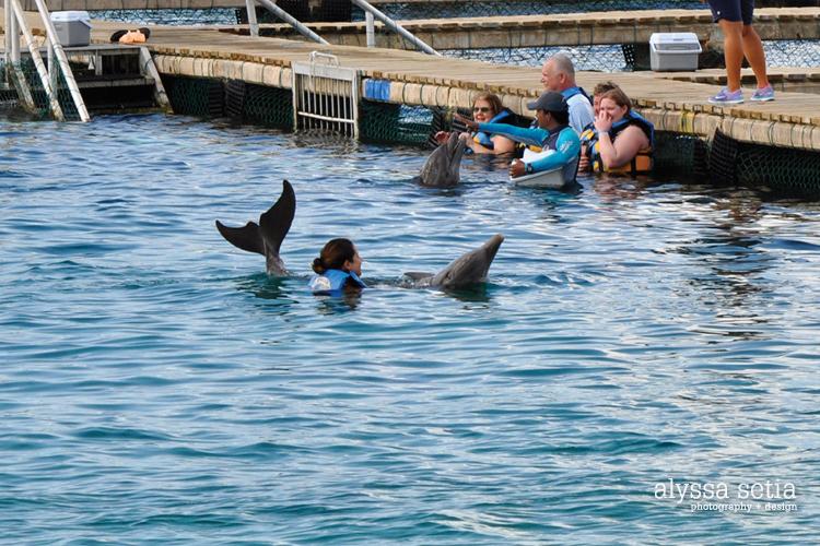 Cruise, Cozumel19