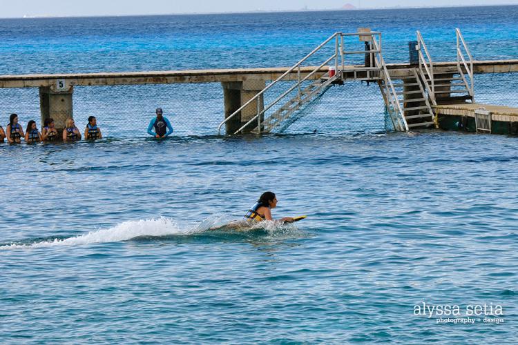 Cruise, Cozumel24