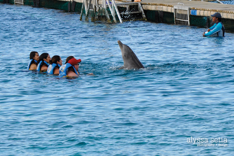 Cruise, Cozumel25