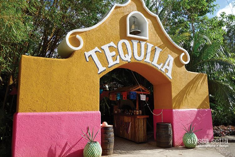 Cruise, Cozumel28