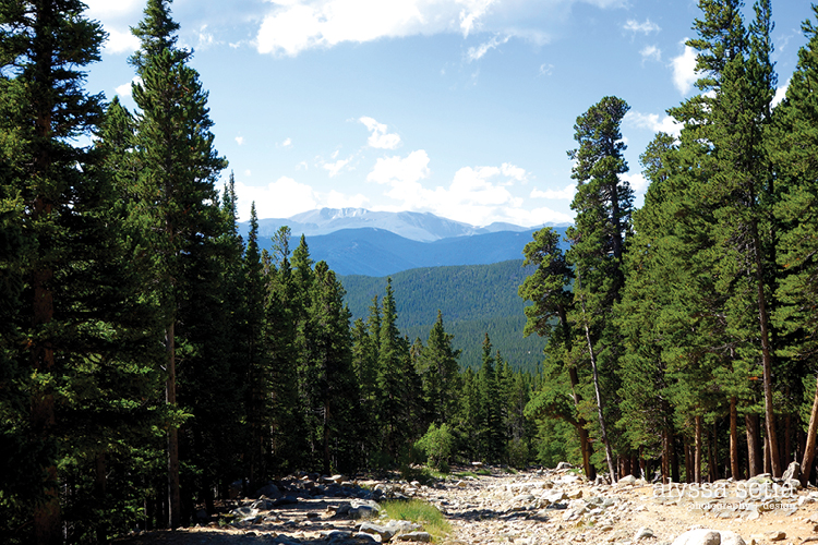 Colorado24