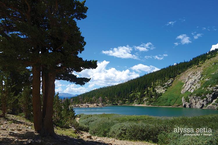 Colorado50