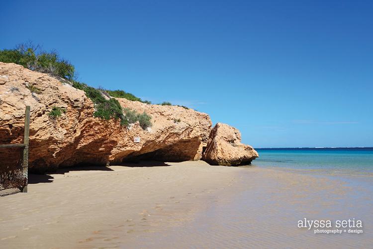 AU, Coralbay5