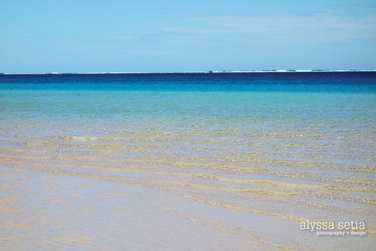 AU, Coralbay8