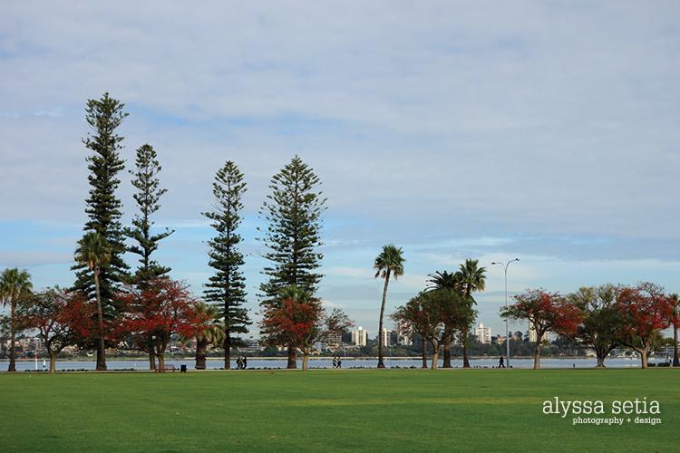 Perth flat cottesloe